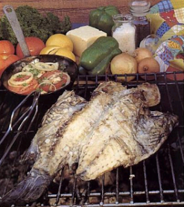 Galjoen Braai Fish Recipes